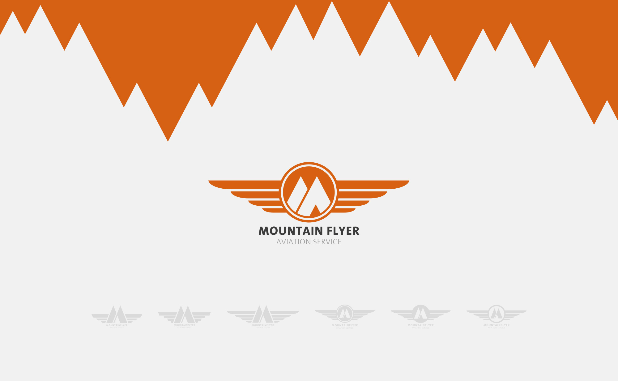 mountainflyer_logo.jpg